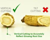 2. Vertical Slicing Eng