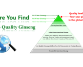 7. 4-Year-Ginseng-Quality-Level Eng