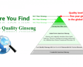 7. 5-Year-Ginseng-Quality-Level Eng