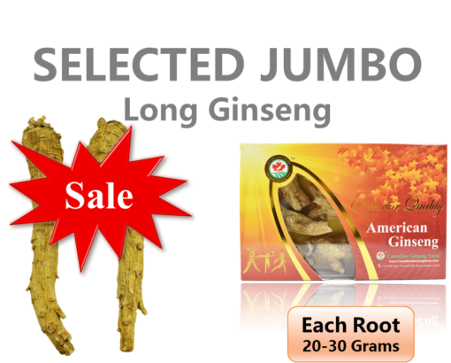 0. Selected Jumbo Long 200g Eng